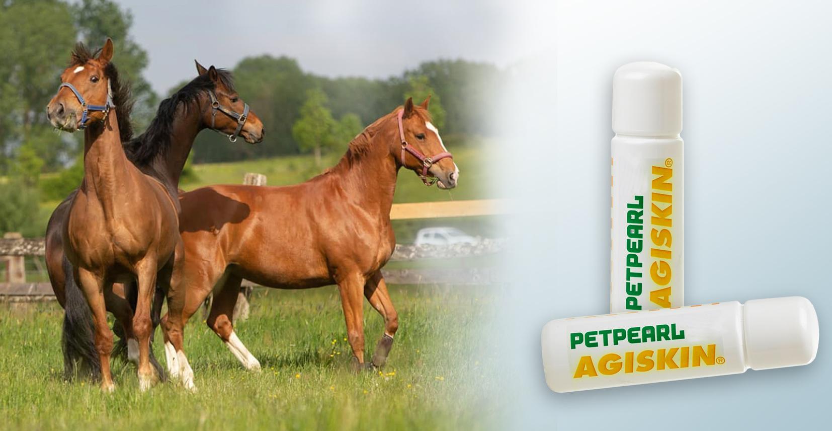 PETPEARL Vitalstoffe für Pferde & Hunde